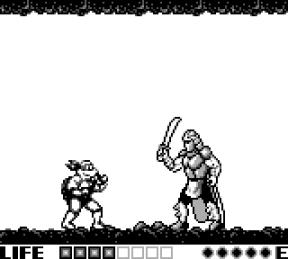 Teenage Mutant Ninja Turtles - Fall of the Foot Clan_28