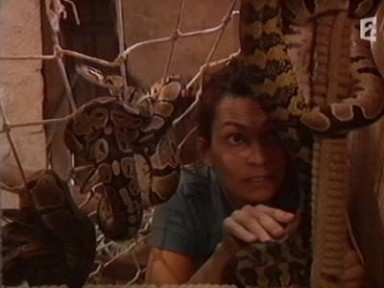 fort_boyard_serpents